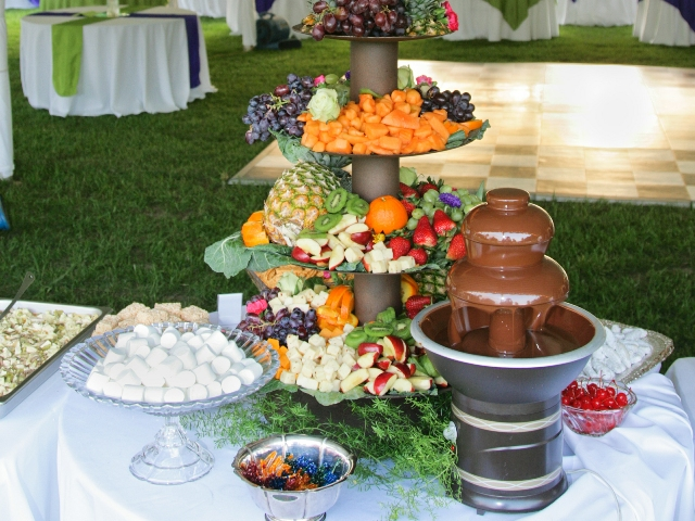Catering for Wedding Reception
